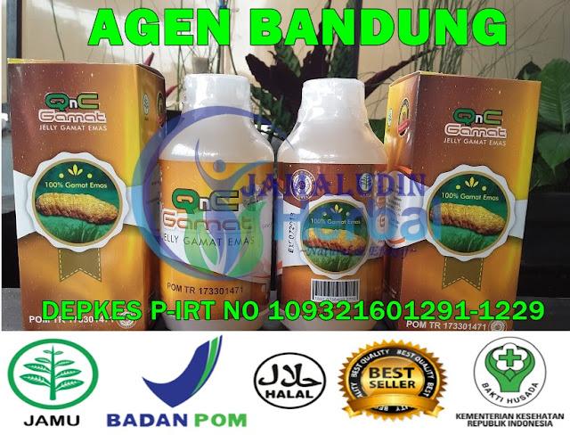 http://tilupuluhherbal.blogspot.co.id/p/qnc-jelly-gamat-agen-bandung.html