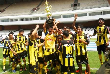 Resultado de imagem para Castanhal Esporte Clube