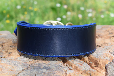 wide padded collar for dobermann made in blue leather with blue padding