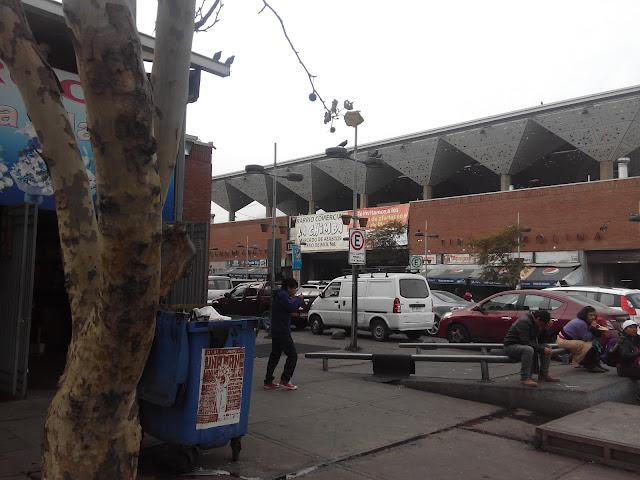 La Vega Chica, Santiago de Chile