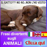 http://frasidivertenti7.blogspot.it/2014/10/animali-frasi-divetenti.html