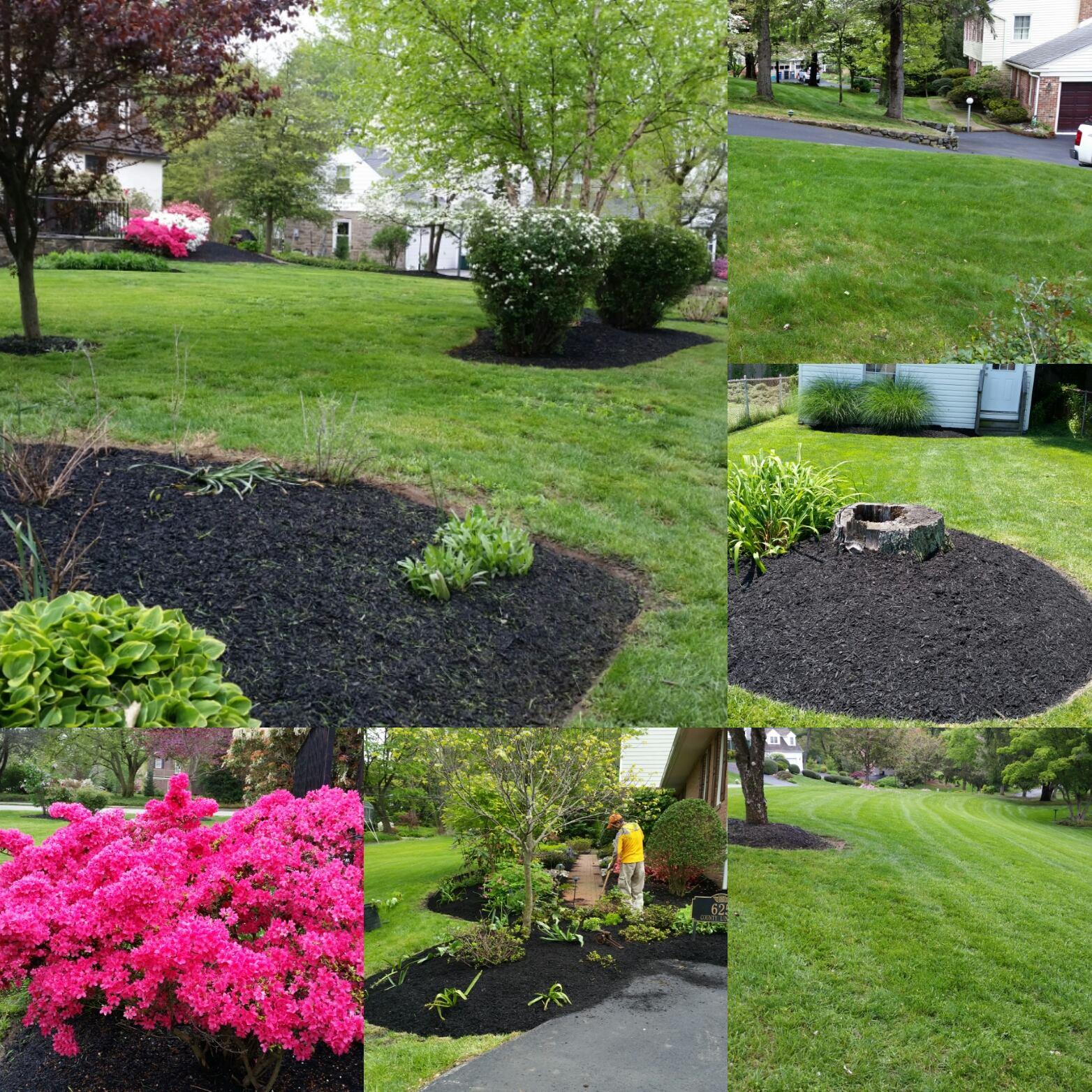 Tony Landscaping