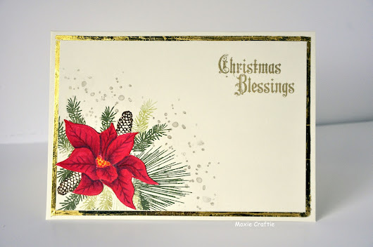 Christmas Blessings Poinsettia