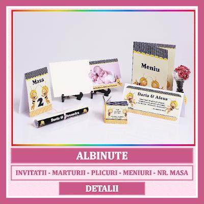 http://www.bebestudio11.com/2016/12/asortate-botez-gemeni-albinute.html