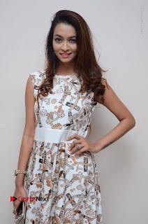 Telugu Actress Reshmi Thakur in Long Dress at Plus One ( 1) Audio Launch  0012.jpg
