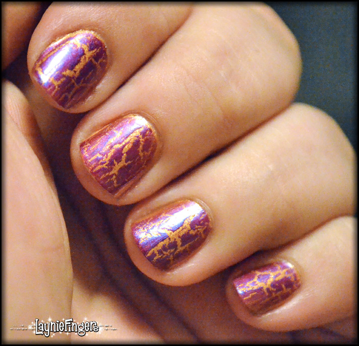 Lsu nails / Best food french quarter