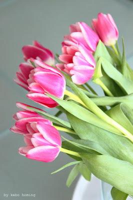 Blumen am Freitag mit Tulpen in pink bei kebo homing, Südtiroler Food- und Lifestyleblog, Styling und Fotografie