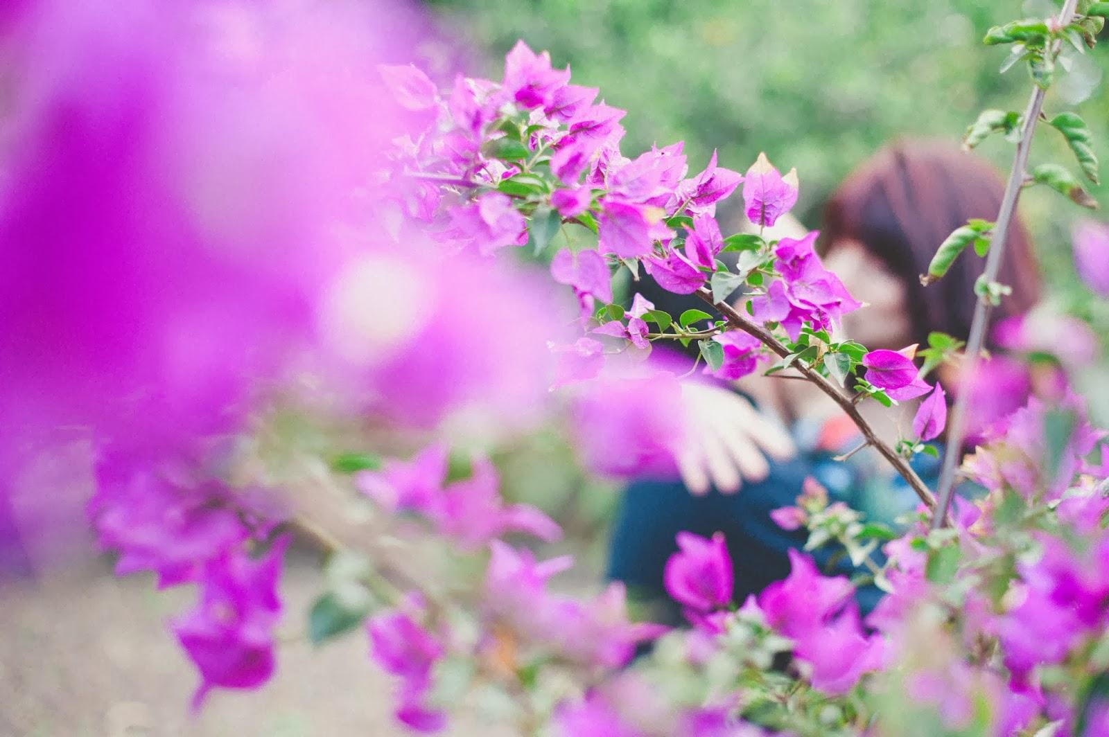 Aljosa petric fotografo de boda las palmas gran canaria - Fotografo las palmas ...