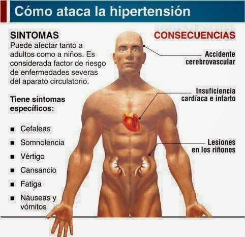 Todo Sobre la Hipertensión Arterial - Medicina Natural
