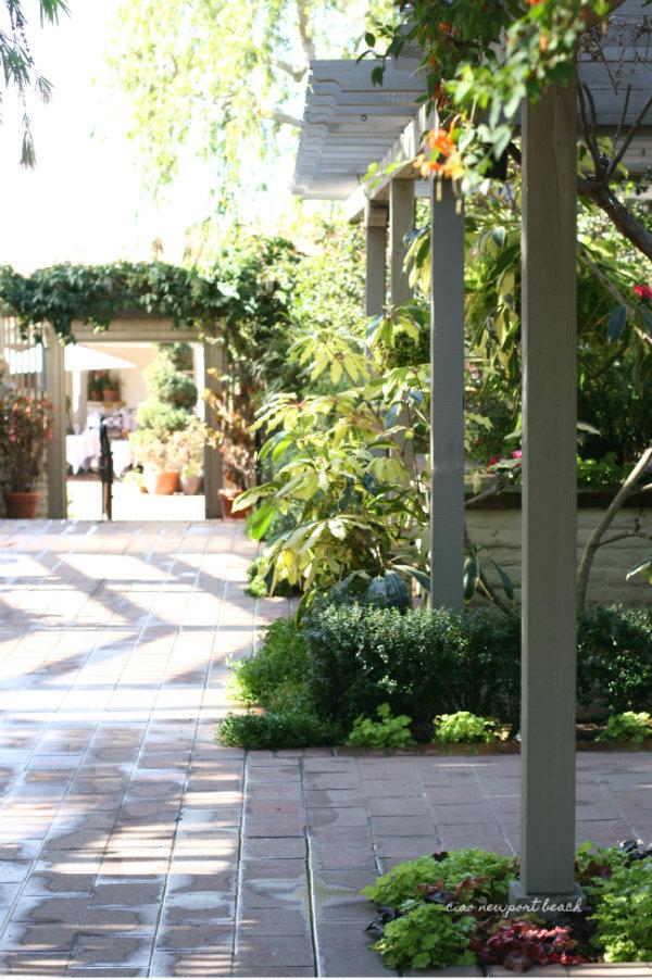 ciao! newport beach: destination: sherman library gardens