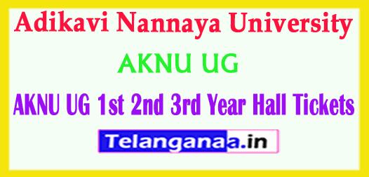 AKNU UG Adikavi Nannaya University 1st 2nd 3rd Year 2019 Hall Tickets Download