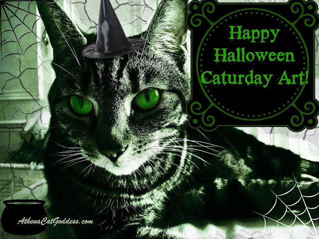 Halloween Caturday ART