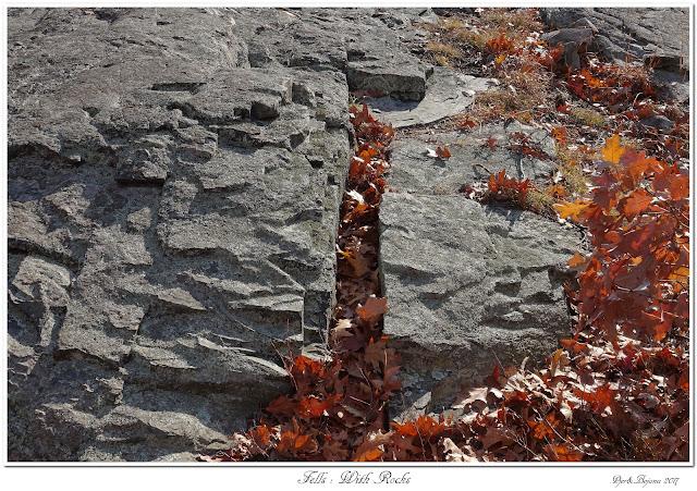 Fells: With Rocks
