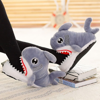 Coolest Slippers That You Can Wear