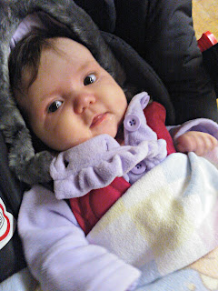 Graco Evo Week The Graco Evo Junior Baby Seat Red Rose