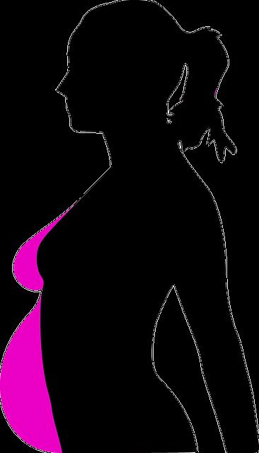 Беременность человека делится на три периода по три месяца каждый, которые называются триместрами