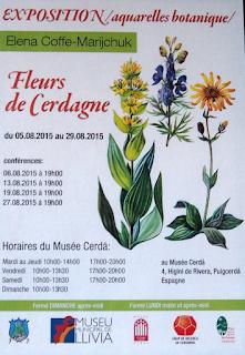 Exposition aquarelles botanique - Fleurs de Cerdagne d'Elena Coffe-Marijchuk, Musée Cerdà (Puigcerdà)