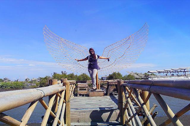 Keindahan Wisata Hutan Mangrove Kulon Progo Yogyakarta