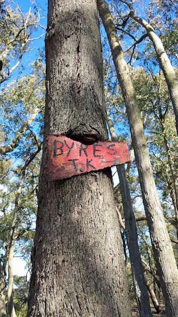 Lerderderg State Park Walk