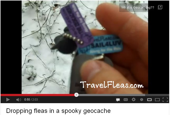 Geocaching Adventures with TravelFleas