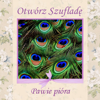 http://szuflada-szuflada.blogspot.com/2018/01/otworz-szuflade-w-styczniu.html