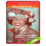 The Death and Life of Marsha P. Johnson (2017) WEBRip 720p Audio Dual Latino-Ingles