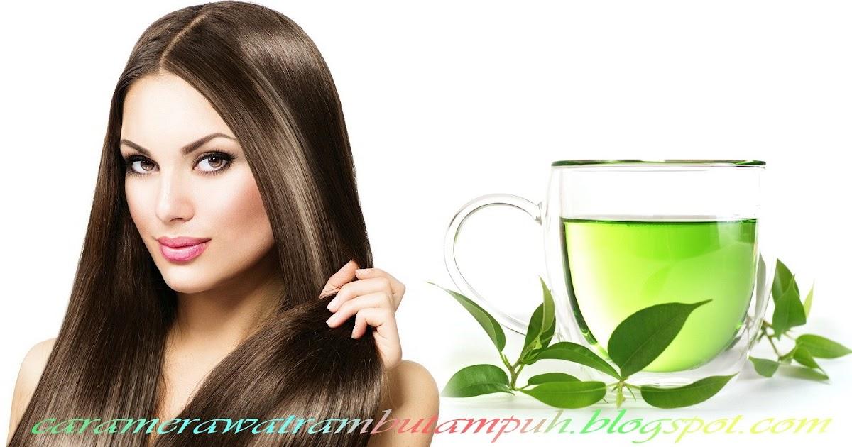 9 Rekomendasi Sampo Green Tea Ini Bermanfaat untuk Membuat Rambut Selalu Sehat dan Indah