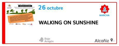 Walking on sunshine desde Alcañiz