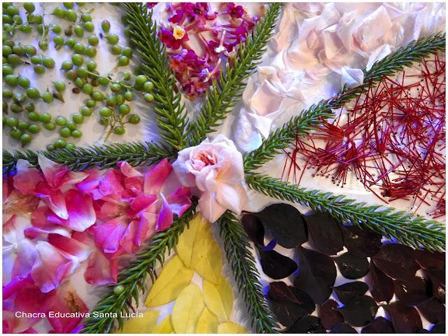 Mandala de hojas y pétalos de flores - Chacra Educativa Santa Lucía