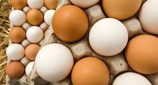 صور صور بيض 2019 احلى اشكال البيض للاطفال 1020626172.jpg
