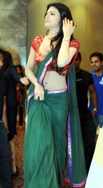 Sherlyn chopra in saree photo
