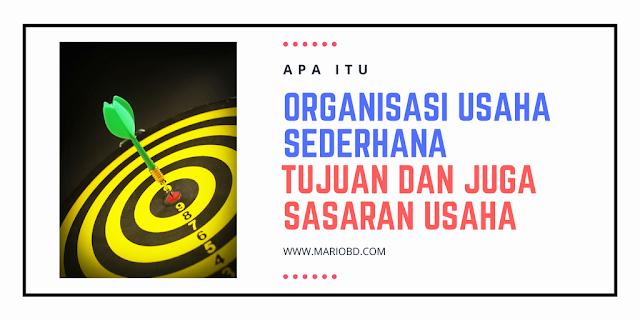 Apa Itu Organisasi Usaha Sederhana, Tujuan Dan Sasaran Usaha - Mario Bd