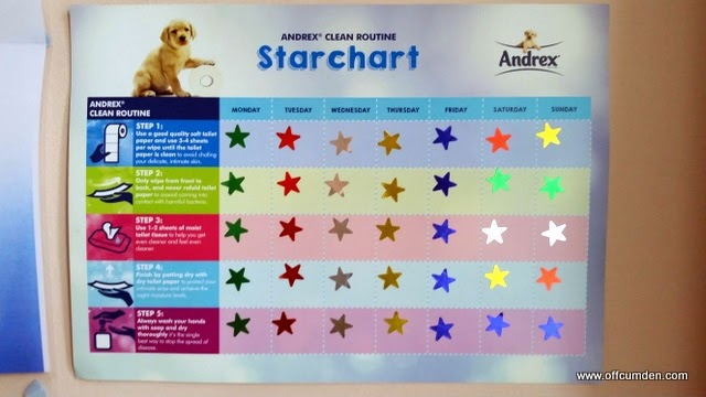 Completed star chart
