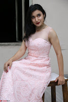 Sakshi Kakkar in beautiful light pink gown at Idem Deyyam music launch ~ Celebrities Exclusive Galleries 072.JPG