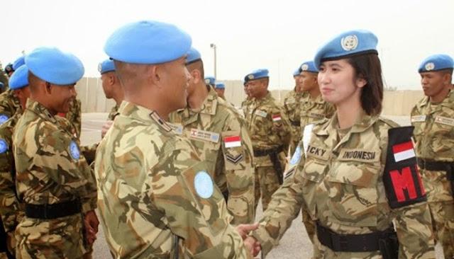 Pasukan Perdamaian