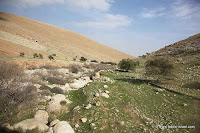 the area of Fatzael stream in Jordan Rift Valley in Israel