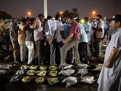 Fresh fish is auctioned off before dawn to vendors and restaurants in Abu Dhabi.