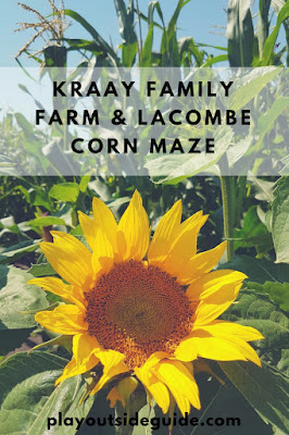 Kraay Family Farm and Lacombe Corn Maze, Alberta