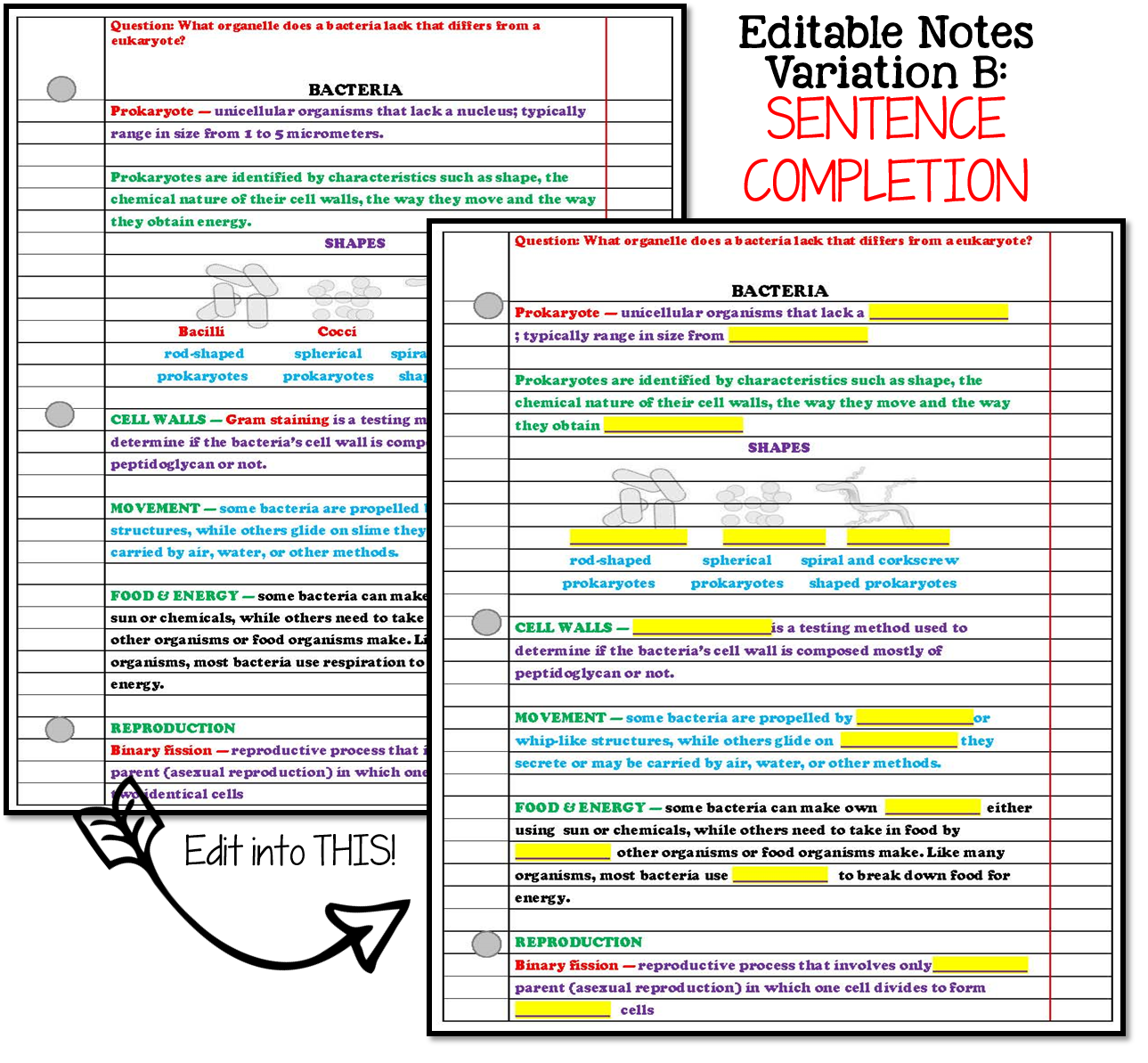 Nitty Gritty Science Making Editable Notes Work For You