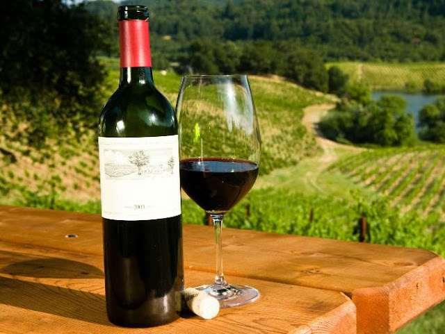 Lo mejor de los vinos mexicanos