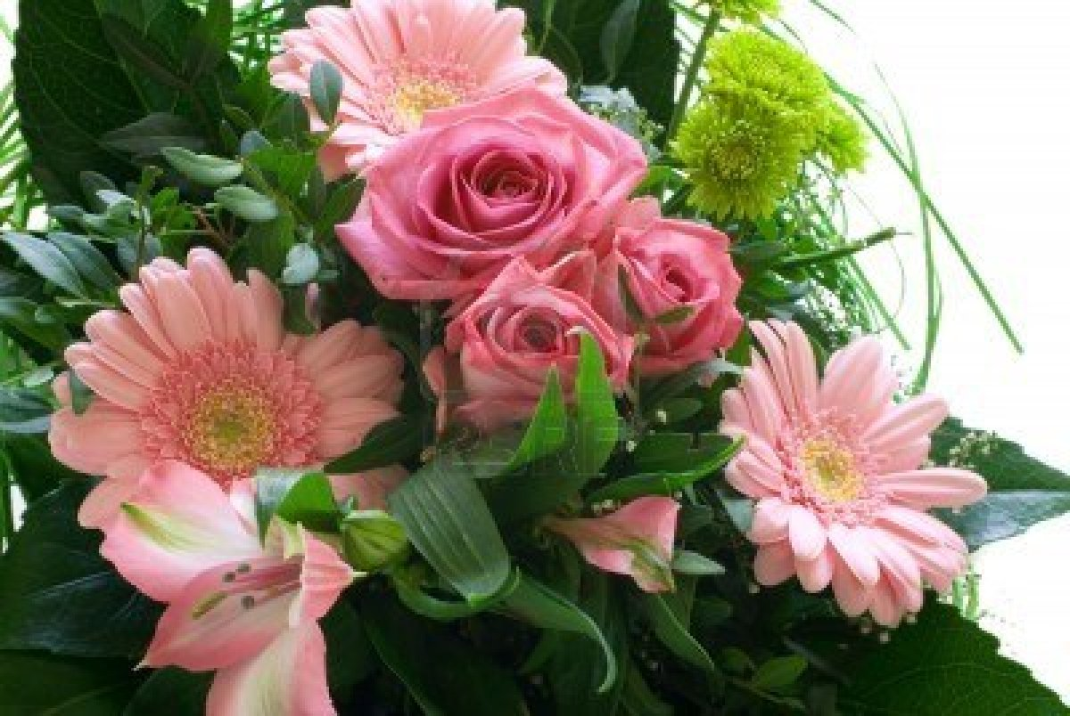 Funny Pictures Gallery: Beautiful Flower Bouquet, Pretty