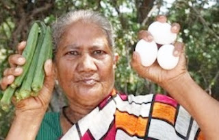 My grandma prepare a Lady finger with egg curry – Village food factory