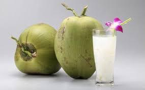 air kelapa ijo