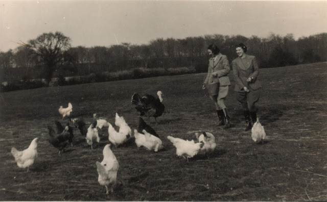 Farming during World War 2