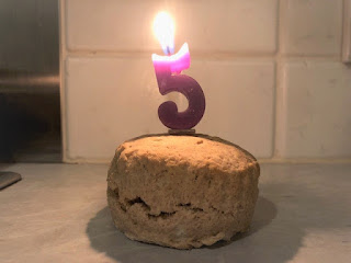 Scone Blog is 5 today