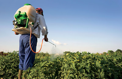 Health Issues Associated with Exposure to Pesticides - El Paso Chiropractor