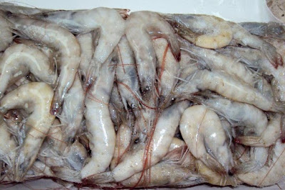 Vannamei Shrimp Price How to Get