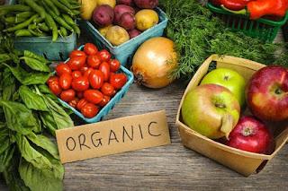 Contoh Makanan Organik
