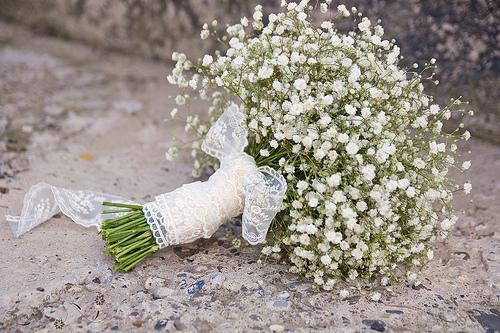hoa cuoi la hoa baby trang