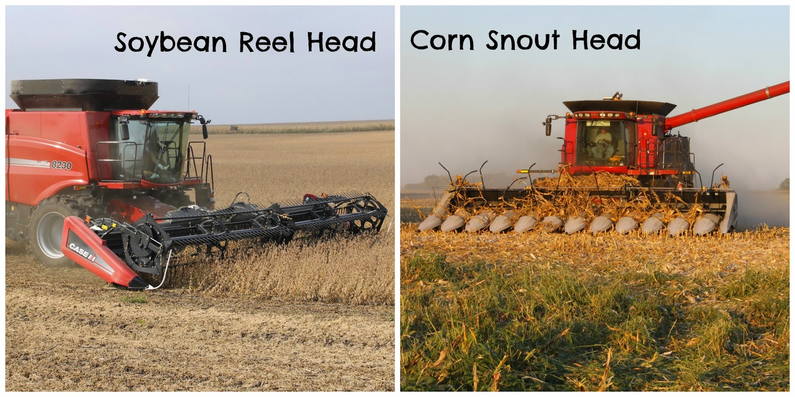 Soybean and Corn Harvest Headers